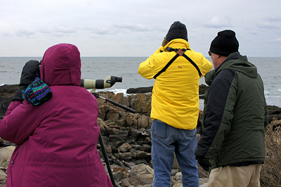 Checking the waters at Marginal Way